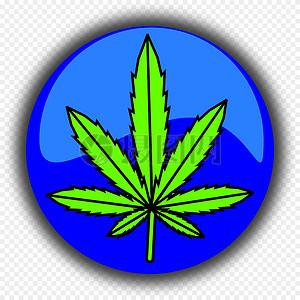 大麻叶图片