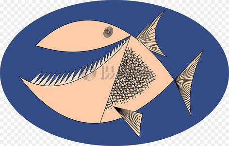 食人鱼图片