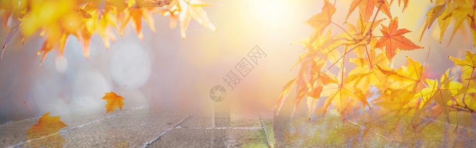 电商扁平风格秋季枫叶背景图片