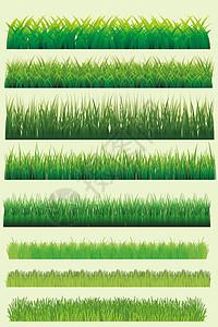 小草矢量素材图片