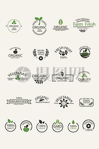 植物标志矢量图案图片