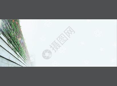 墙角爬山虎背景banner图片
