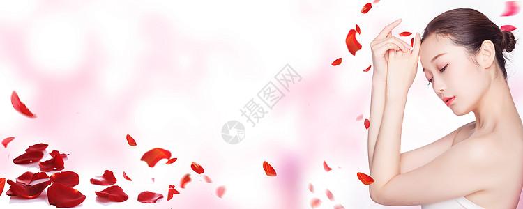 模特花banner粉红色背景图片