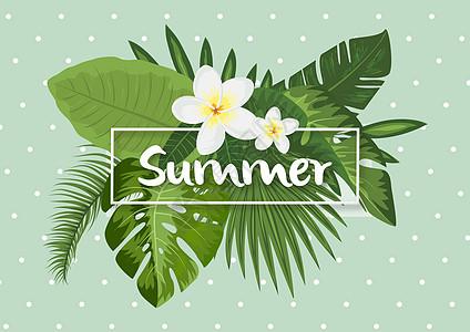 夏天summer图片