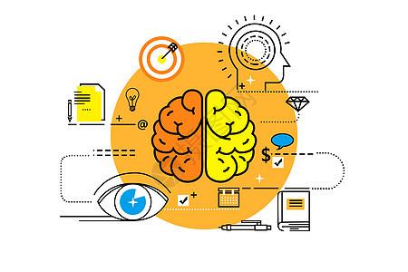 大脑学习素材图片