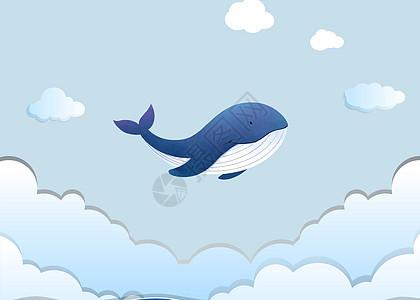 小鲸鱼插画图片