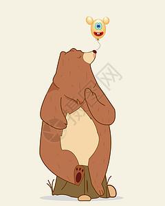 树袋熊图片