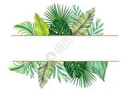 手绘水彩叶子装饰图片