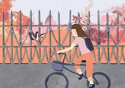 骑着单车的少女图片