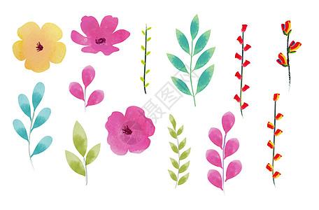 手绘水彩叶子花朵装饰图片