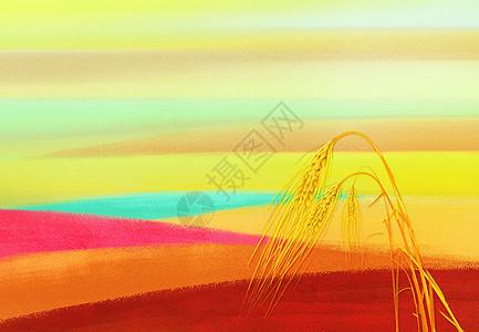 秋天金黄的麦穗图片