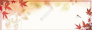 秋季秋分背景图图片
