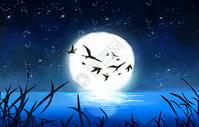 万圣节夜晚背景图片