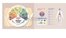 人体饮食数据图表矢量图图片