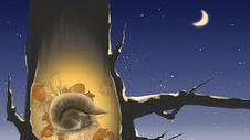 立冬节气插画冬眠的松鼠图片