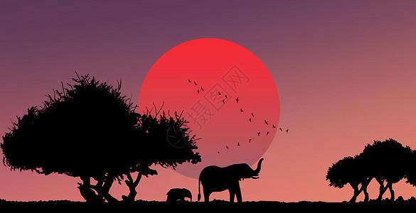 夕阳下的大自然图片