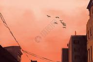 现代城市中夕阳下的归鸟背景图片