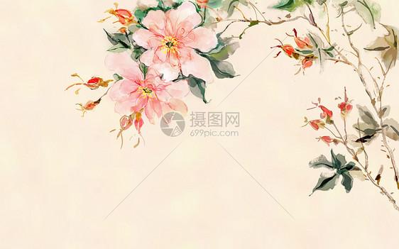 中国风花卉背景插画图片