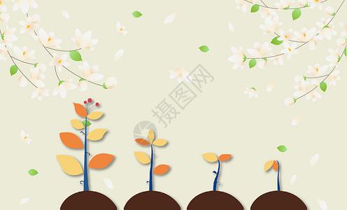 童趣花卉图片