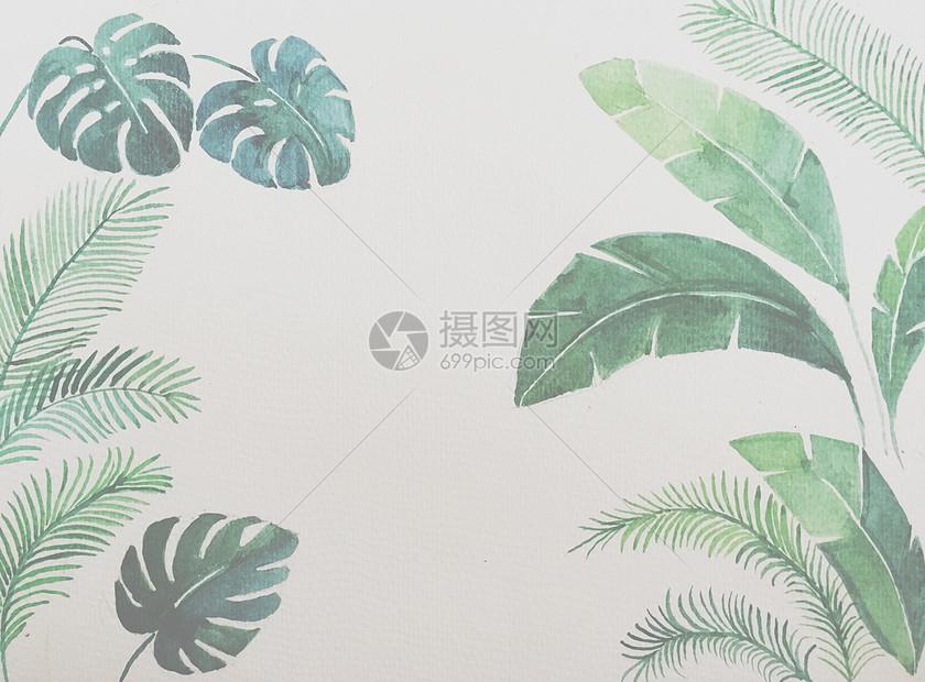 手绘植物背景素材
