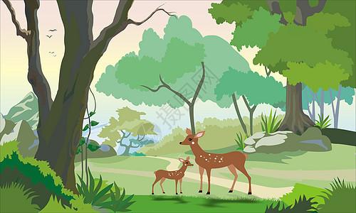 林中小鹿背景图片