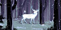 冬夜里的白色小鹿图片