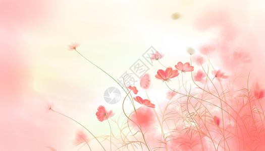 花插画背景图片