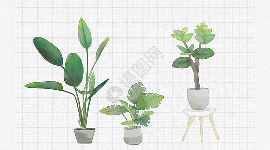 绿色水彩植物盆景图片