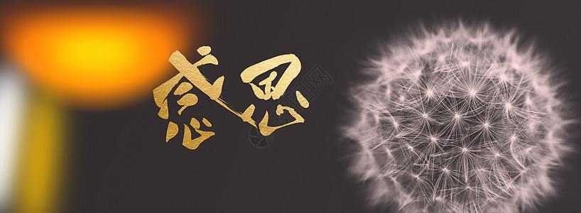 感恩节banner图片
