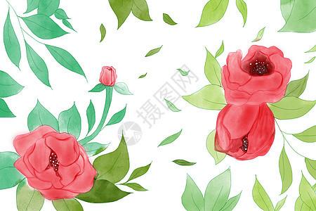 手绘植物花朵背景图片