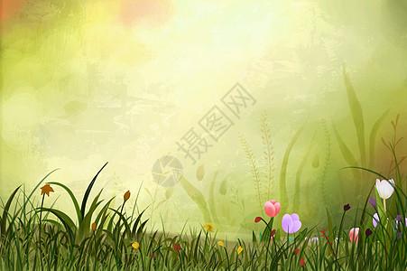 手绘小清新郁金香背景图片