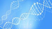 基因DNA科技背景图片