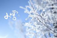 二十四节气小雪图片