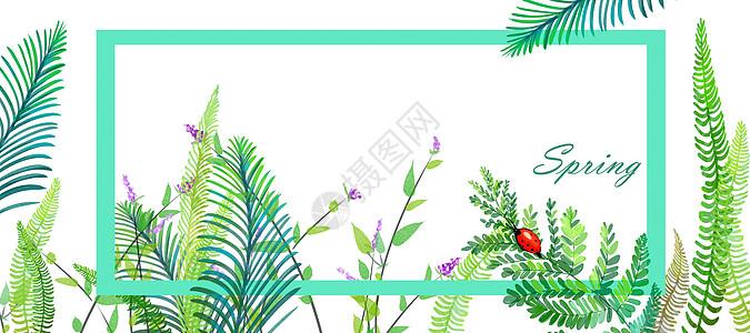 绿色植物手绘背景图片