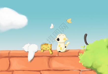 四只猫咪在屋顶玩耍,天气很好图片