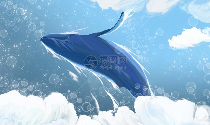 云端的鲸鱼图片