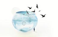 鱼缸中的风景图片