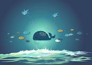 鲸鱼和鸟图片