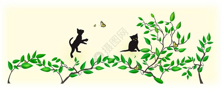 玩耍的猫图片
