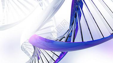 DNA图片
