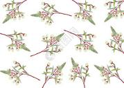 植物元素图片