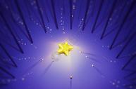 树林里的星星图片