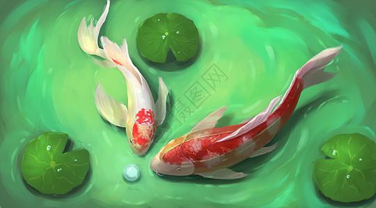 荷塘的锦鲤图片