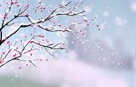 冬天枯树枝插画图片