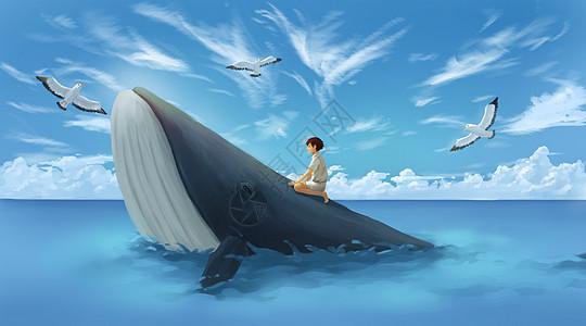 少年与鲸鱼图片