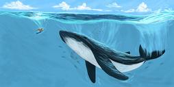 鲸鱼幻想插画图片
