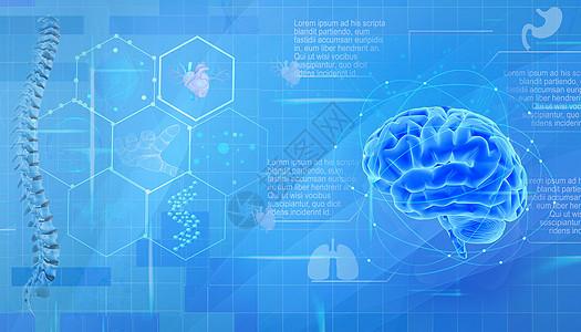 医疗科技器官背景图片