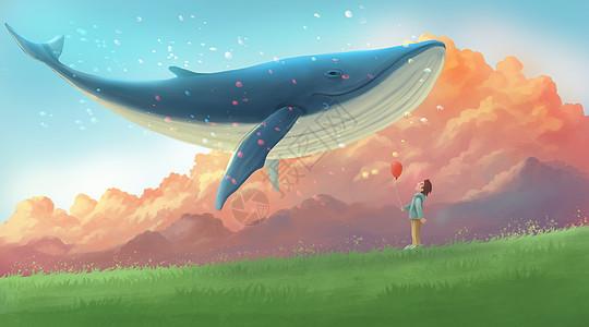 鲸鱼与男孩图片