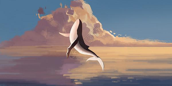 海洋鲸鱼夕阳插画图片
