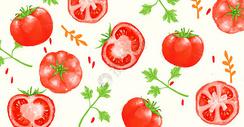 鲜美水果西红柿插画图片